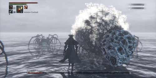 Bloodborne, sfida contro Rom, screenshot della battaglia.