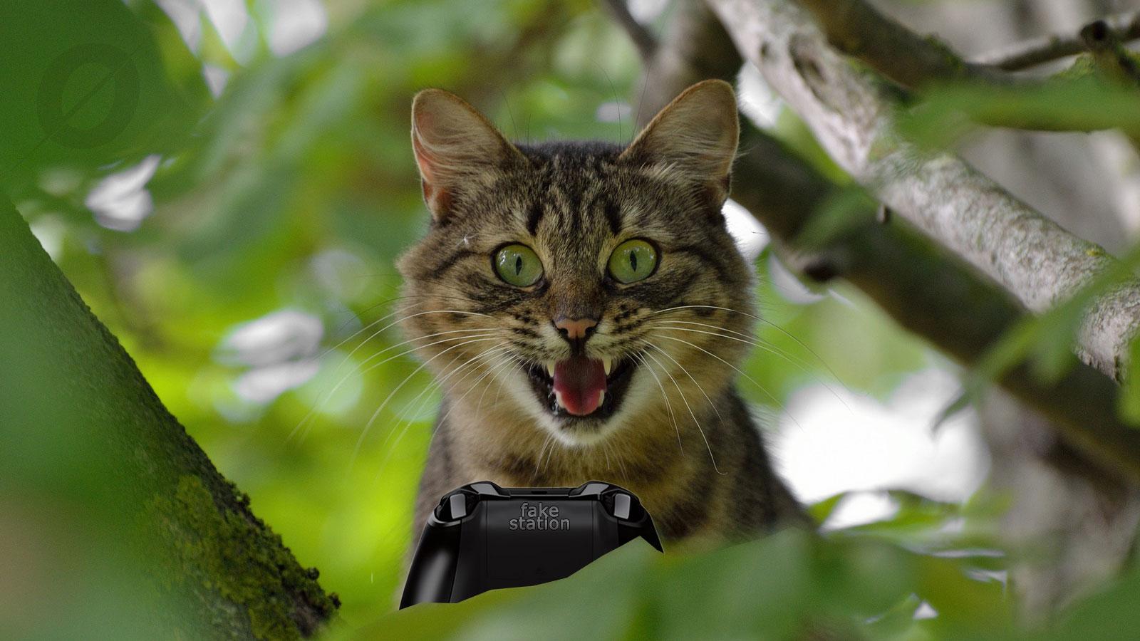 Un gatto sorpreso videogioca su un albero - cose assurde videogiochi.