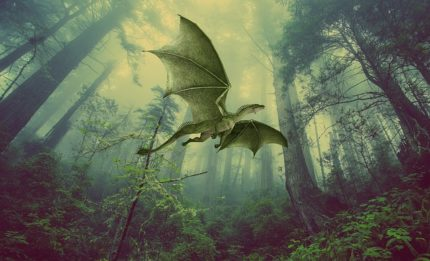 Un drago in una foresta.